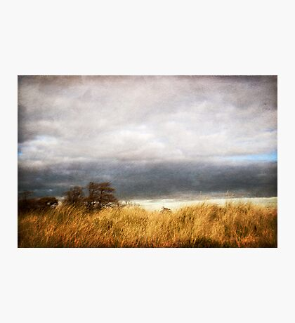 A blustery day Photographic Print