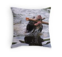 Here's My Stick Throw Pillow