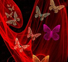 Butterflies -Art + Design Products by haya1812