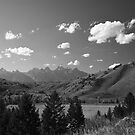 The Grand Tetons in summer by Daniel Sorine