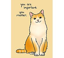 """You Matter"" Cat Photographic Print"