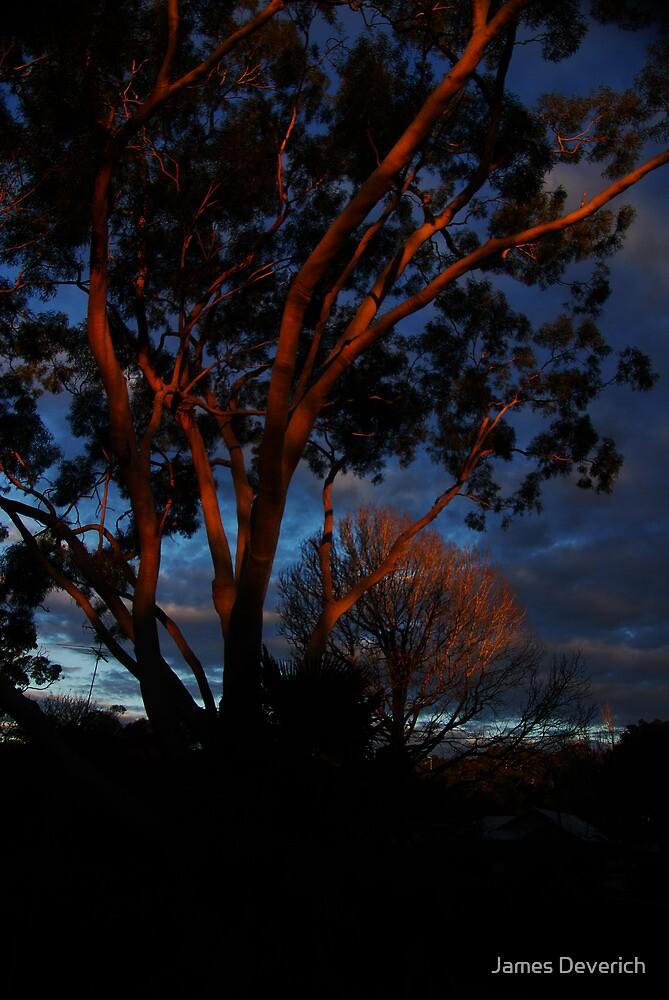 Gums a glow by James Deverich