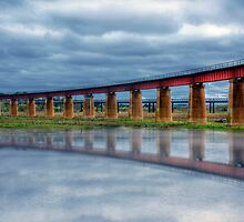 Reflections of a Flood - The River Murray, Murray Bridge, South Australia by Mark Richards
