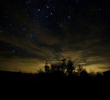 Melbourne Glow by Leanne Robson
