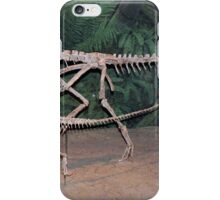 Funky Coelophysis iPhone Case/Skin