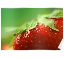 Sweet Summer Strawberry Poster