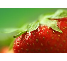 Sweet Summer Strawberry Photographic Print