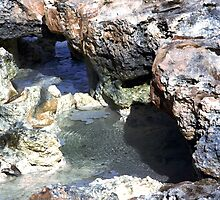 Rock Pool by timbransby