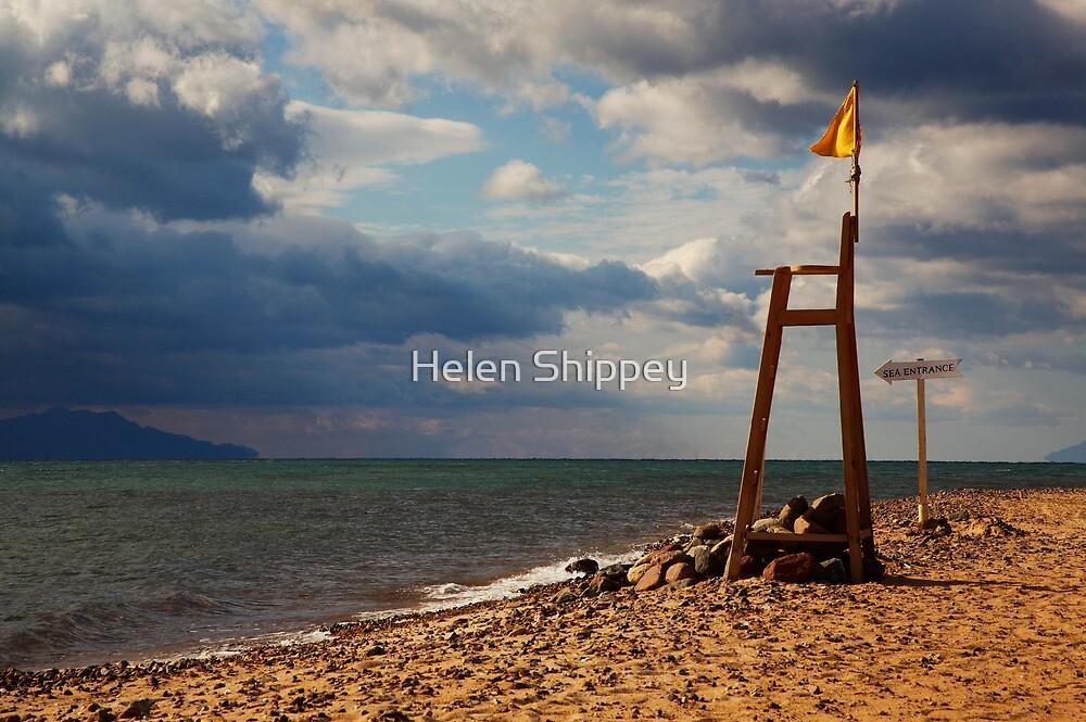 Red Sea Beach by Helen Shippey