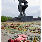 Flowers at the Monument 4, After The Rain and After May 9 (Victory Day) 2011, Rga, Latvia. (2011) by Madeleine Marx-Bentley