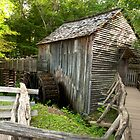 The Mill at Cades Cove by LarryB007