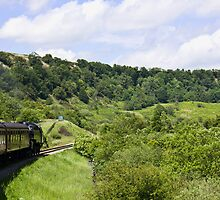 Steam Train passing through valley by Paul Collin