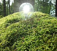 Eco Light in Moss by jennyless