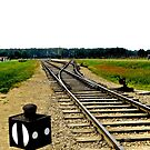 Auschwitz: Birkenau Traintracks by Emily Clarke