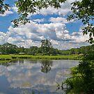 summer in ringwood by mikepaulhamus
