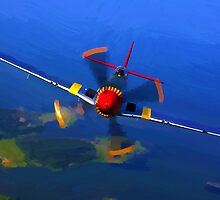 World War II  Mustang by artstoreroom