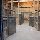Abandoned Stables by Dave Godden