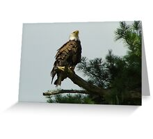 Lasting Bequest Greeting Card