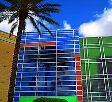 Florida Colors by Susanne Van Hulst