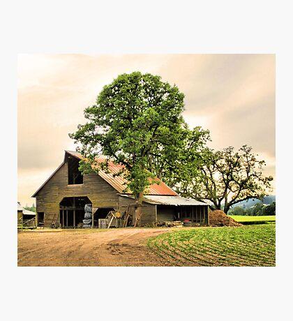 Nixon Farms Photographic Print