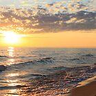 Summer Sunset by Joy Fitzhorn