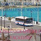 PA Photogs on Vaca Challenge Entry by Shelley Neff