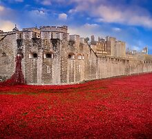Tower Of London Poppies 2014 by StephenRphoto