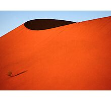 Sculptured dune, Namib Desert soon after sunrise  Photographic Print