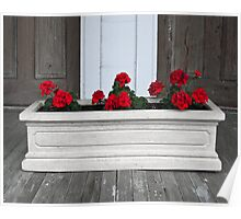 flower box on the porch Poster