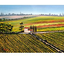 Tuscany - Vineyards Photographic Print