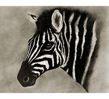 THE ZEBRA Photographic Print
