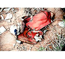 Fatality Photographic Print
