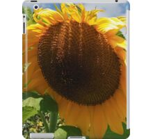 Sunflower - Helianthus iPad Case/Skin