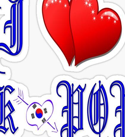I LOVE K POP MUSIC. Sticker