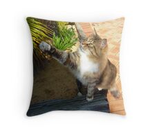 Grumpy Daisy, Miss Bossy Boots... Throw Pillow