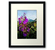 Summer in Kapatagan Framed Print