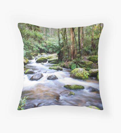 Little River Throw Pillow