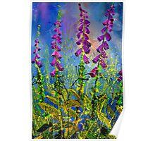 Foxgloves 671170 Poster