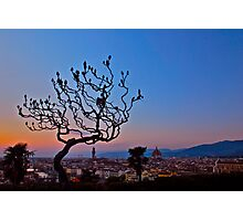 Florence at Sunset Photographic Print
