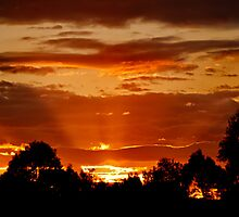 Golden Rays - Winter Sunset, Eastern Australia by RRDA