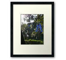 Blue Spot Blue Tree Framed Print