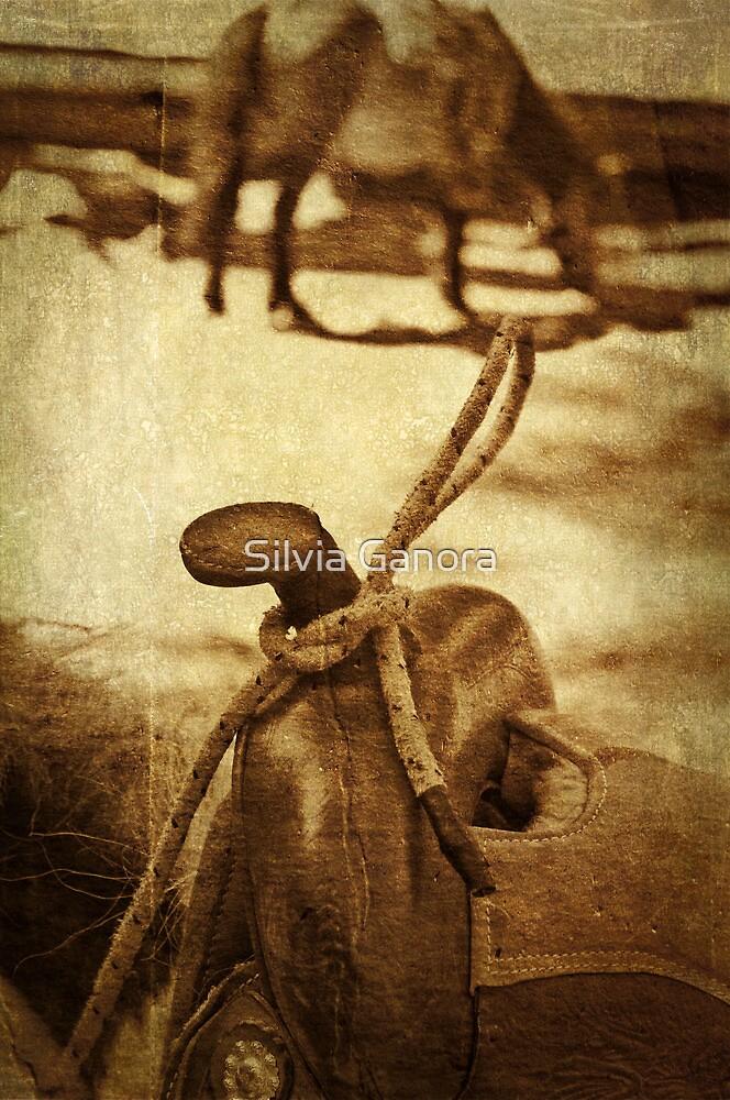 Saddle by Silvia Ganora