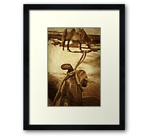 Saddle Framed Print