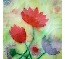 Faux Painting Photographic Print