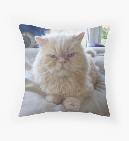 Grumpy Kitty Throw Pillow