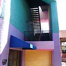 The colors of La Placita Village 3 by nealbarnett