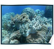 Underwater wind Poster