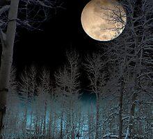 Moon Glow 2015 by David Denny