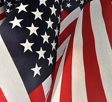Stars and Stripes Forever ! by Corinne Noon