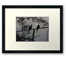 """""""Two Turtle Doves Hangin' Together"""" Framed Print"""